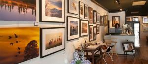 slider-gallery1