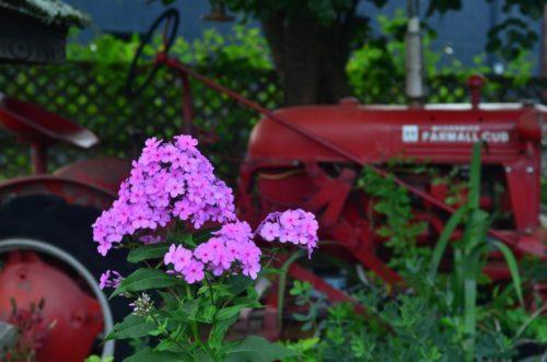 flower-tractor